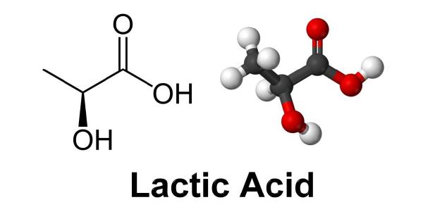 WHAT IS LACTIC ACID?