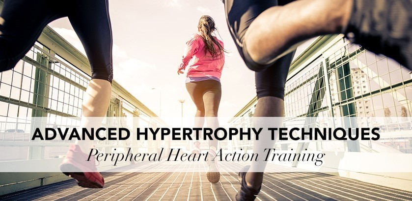ADVANCED TRAINING METHODS FOR HYPERTROPHY – PERIPHERAL HEART ACTION TRAINING