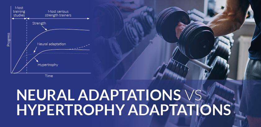 NEURAL ADAPTATIONS VS HYPERTROPHY ADAPTATIONS